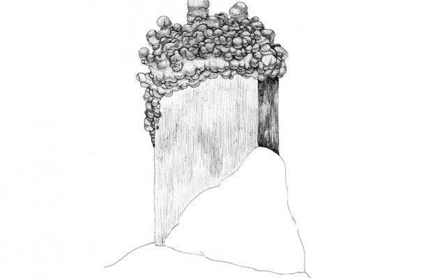 캄브리아기 대폭발, 종이에 펜, 20x20cm, 2018
